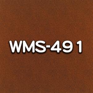 WMS-491