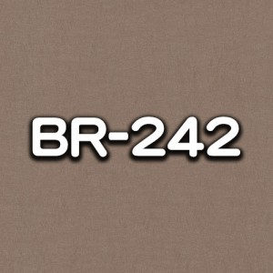 BR-242