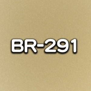 BR-291