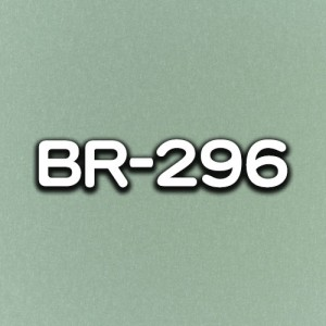 BR-296