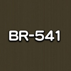 BR-541