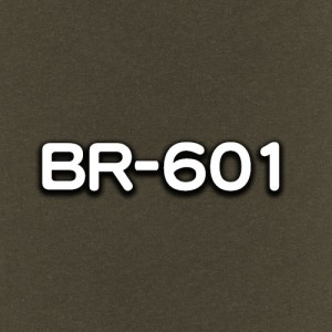 BR-601
