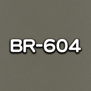 BR-604