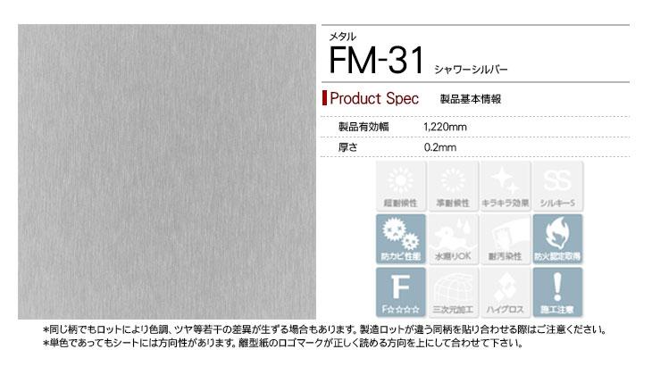 fm-31rep