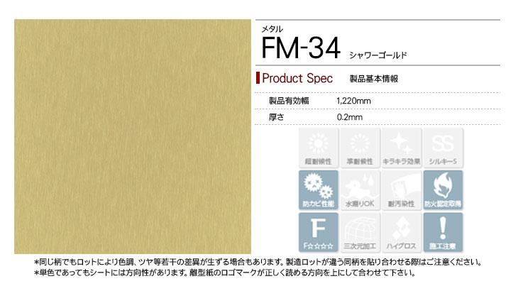 fm-34rep