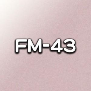 FM-43