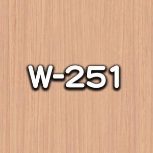 W-251
