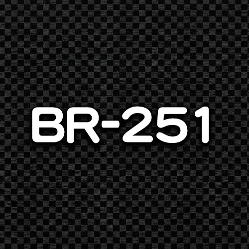 BR-251