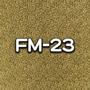 FM-23