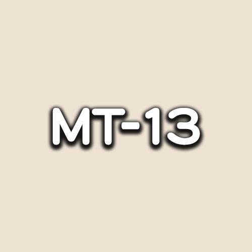 MT-13