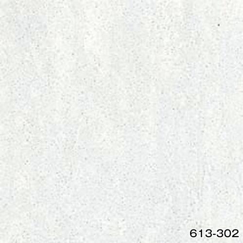 613-302