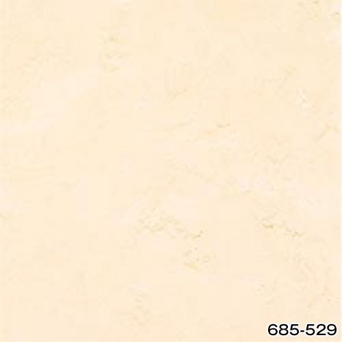 685-529