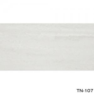 TN-107