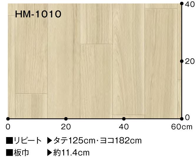 hm-1009-101