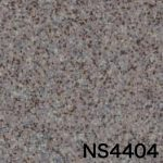NS4404