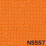 NS557