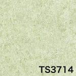 TS3714