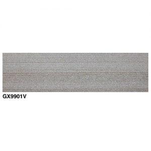 GX9901V