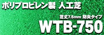 WTB-750