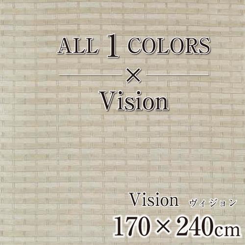 Vision_170×240