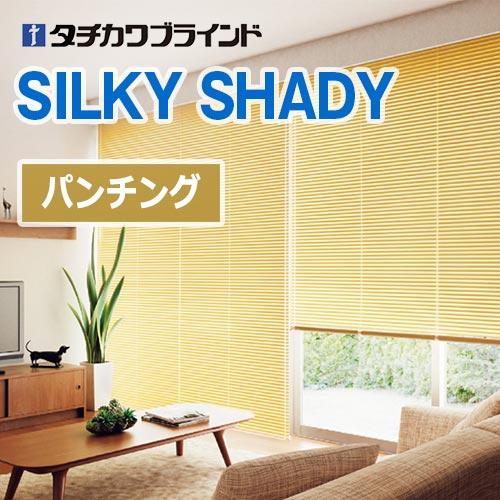 silkyShady-punching