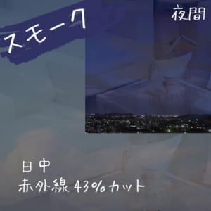 kikuchi_SM