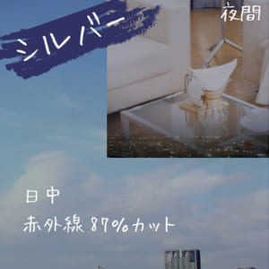 kikuchi_SI