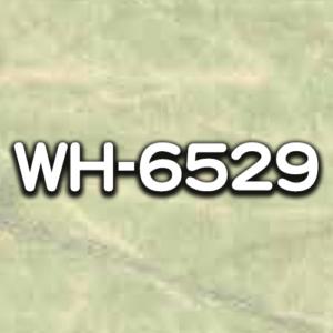 WH-6529