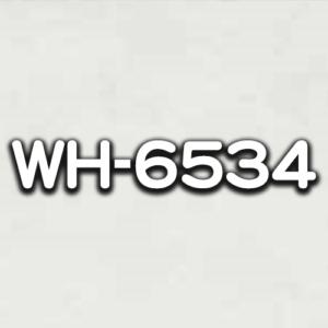 WH-6534
