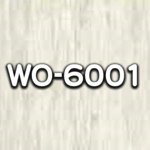 WO-6001