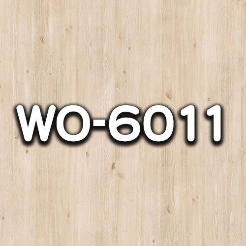 WO-6011