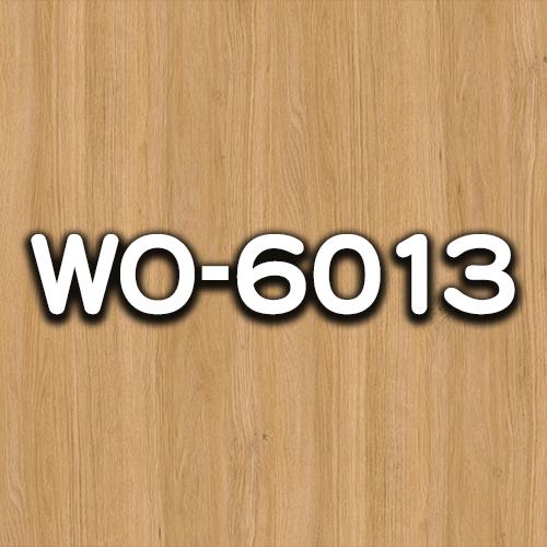 WO-6013