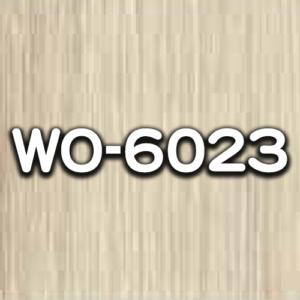 WO-6023