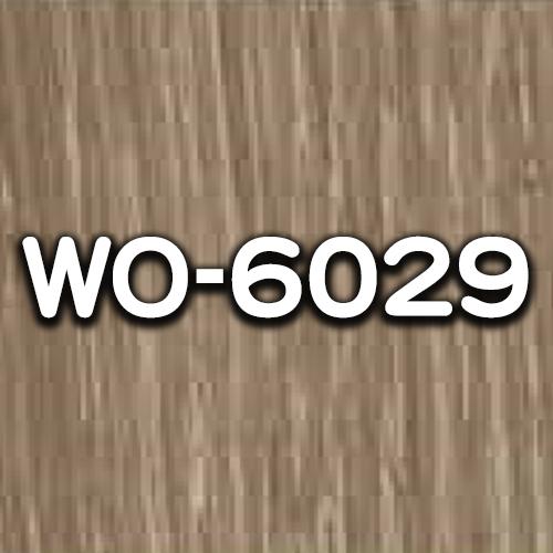 WO-6029