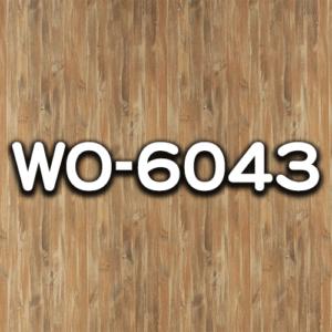 WO-6043