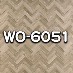 WO-6051