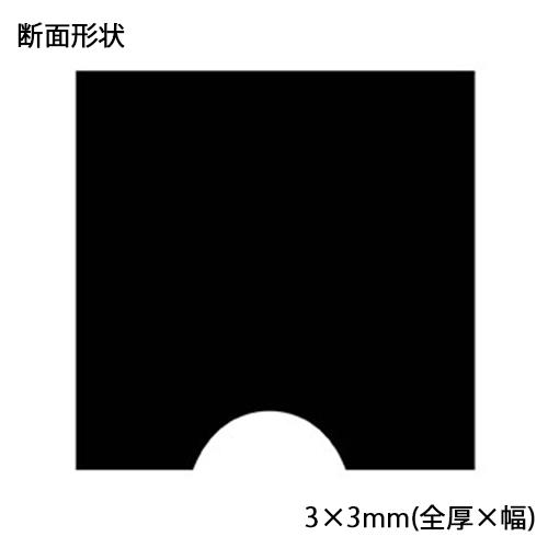 tori-nmeji-33