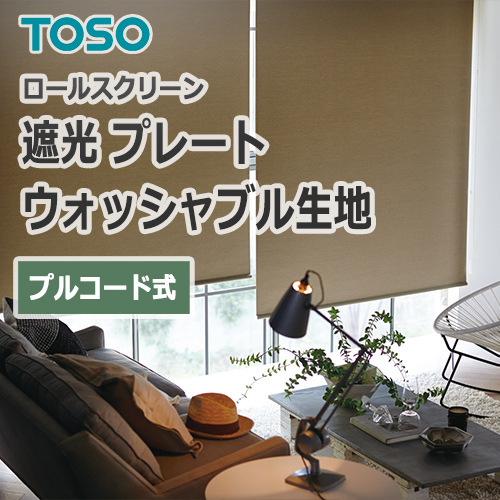 TOSO_plate_washable_pull