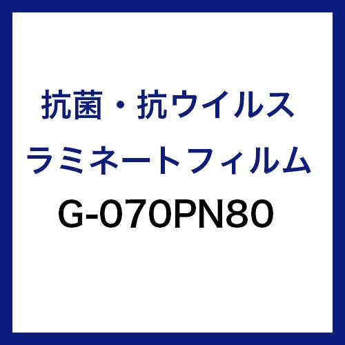 G-070PN80